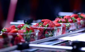 Transformation de Fruits et Légumes