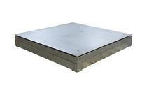 Balance à plate-forme / avec indicateur séparé / en acier inoxydable