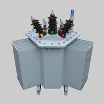 Transformateur de distribution / immergé / AC / pour l'industrie
