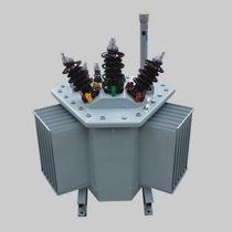 Transformateur de distribution / immergé / AC / à faible perte