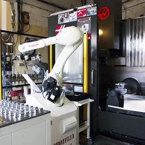 Cellule robotisée de chargement / de palettisation / de déchargement / pour machine outil