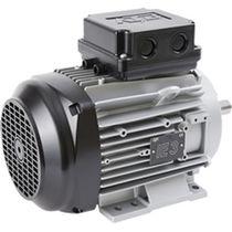 Moteur basse tension / triphasé / à induction / 80 V