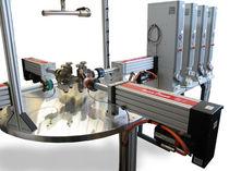 Machine d'essai multiparamètres / horizontale / biaxiale / servo-mécanique