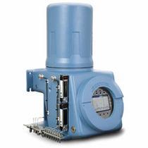 Chromatographe en phase gazeuse / FID / de process