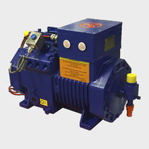 Compresseur d'air / stationnaire / alternatif / résistant aux flammes