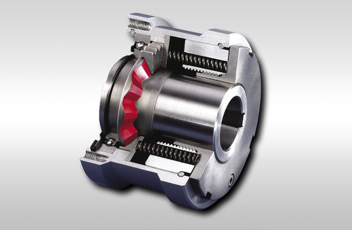 limiteur de couple avec roue dentée - RINGSPANN