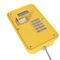 téléphone analogique / VoIP / IP66 / IK10