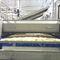 cuiseur industriel avec refroidisseur / de riz / continuCabinplant A/S