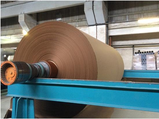 Caisse de réducteur en pulpe d'usine de fabrication du papier de la Roumanie - inverseur de tension de milieu de Goodrive 5000