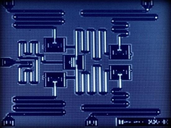 Processeur de cinq qubit, courtoisie d'IBM