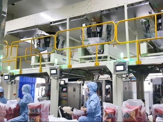 Détecteur de métaux vertical de gorge
