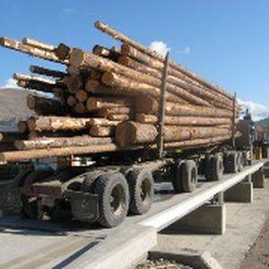 pont-bascule pour camion