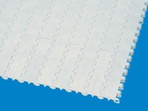 bande de convoyeur homogène / modulaire / en plastique / pour l'industrie agroalimentaire