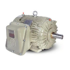 moteur antidéflagrant / AC / à induction / 220 V