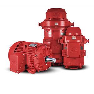moteur pour pompe / AC / à induction / 220 V