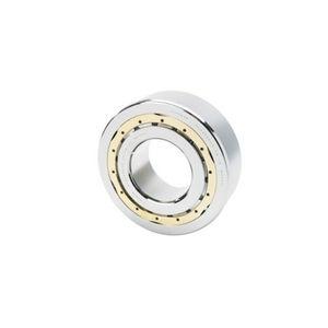 roulement à rouleaux cylindriques / radial / à une rangée / en acier