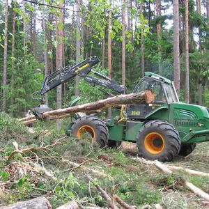 débusqueur forestier