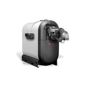 chaudière d'eau chaude / à gaz / à condensation