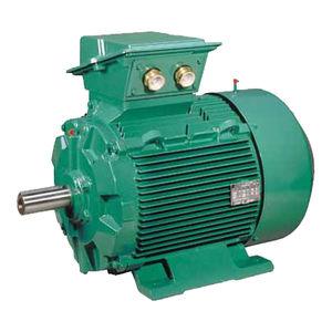 moteur AC / triphasé / à induction / 400 V