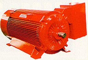 moteur de moyenne tension / AC / asynchrone