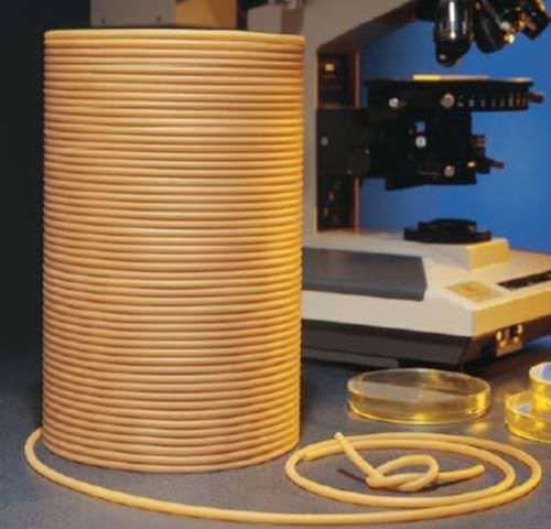 tuyau flexible pour produits alimentaires / pour l'industrie alimentaire / pour transfert / pour laboratoire