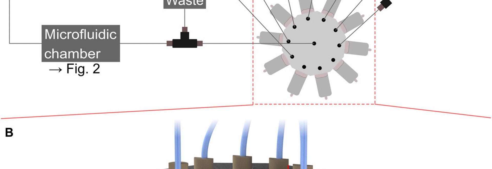 Les chercheurs intègrent le système microfluidic dans l'imprimante de DLW 3D pour nanoprinting multimaterial