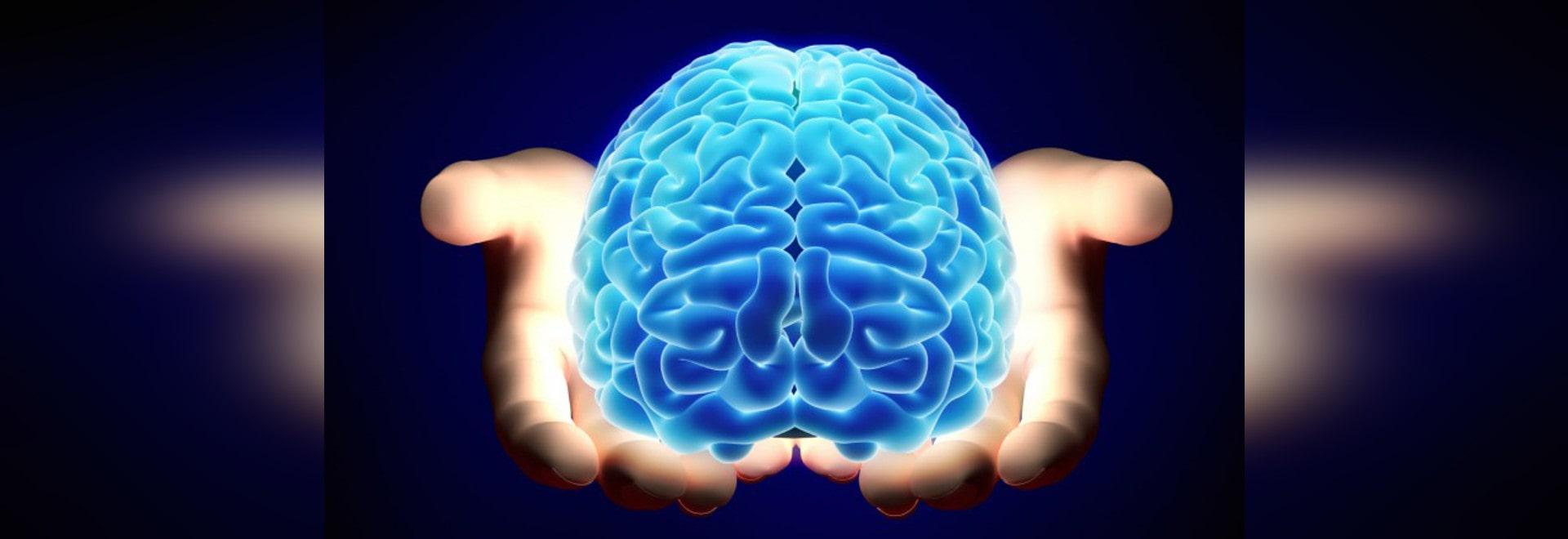 NEUROROBOTICS : QUELS ROBOTS PEUVENT ENSEIGNER LES USA AU SUJET DE NOUS-MÊMES