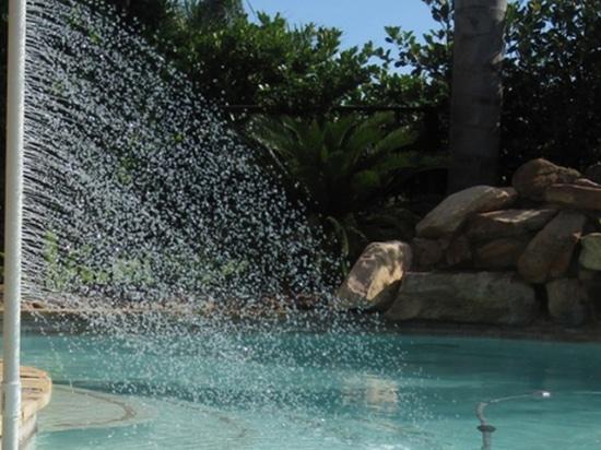 Refroidisseur pour piscine commerciale et résidentielle