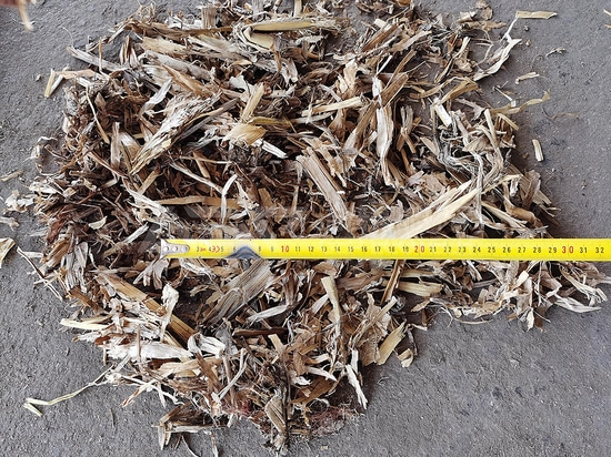 Ligne de production de broyage de paille de maïs du nord-est de la Chine