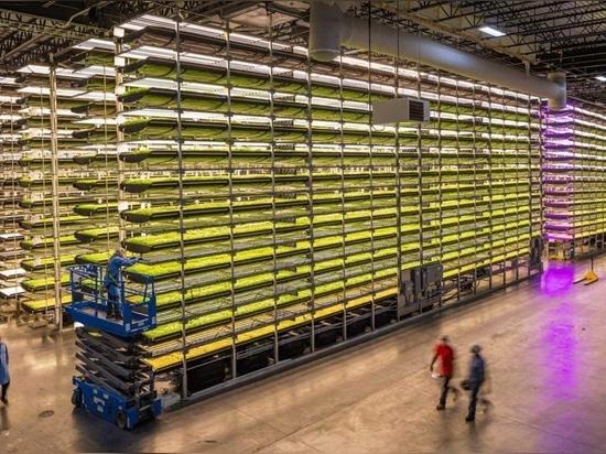 AeroFarms est le leader commercial de l'agriculture verticale en intérieur entièrement contrôlée, avec une productivité annuelle par pied carré 390 fois supérieure à celle de l'agriculture traditio...