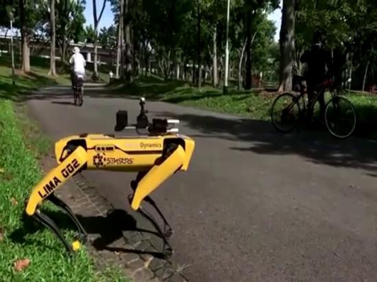 Un robot de Singapour impose une distance de sécurité aux visiteurs du parc