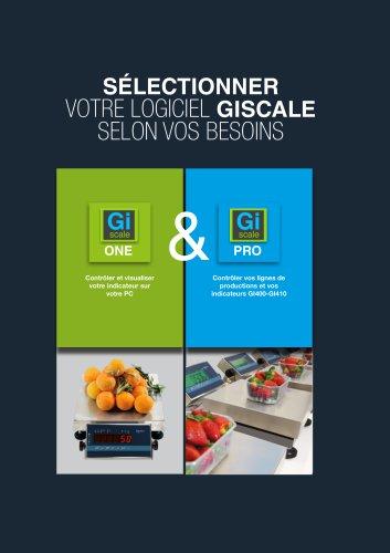 GiScale