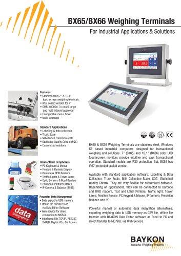 Baykon BX65 / BX66 Weighing Terminals