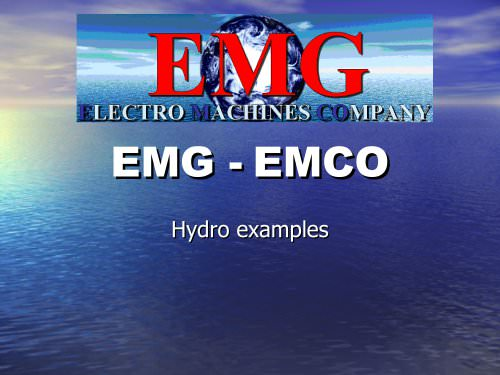 Hydro Brushless Exciter