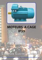 Moteurs à cage IP55
