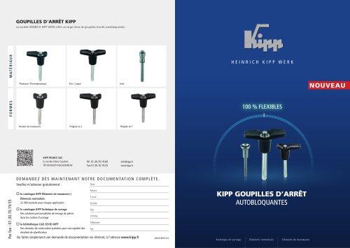 KIPP Goupilles d'arrêt