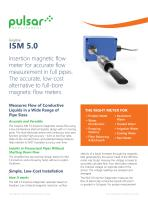 ISM 5.0 Insertion Magmeter