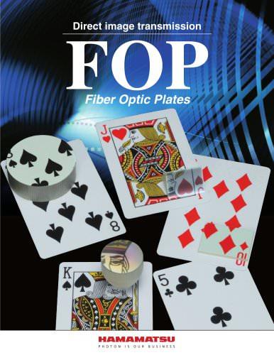 FOP (FIBER OPTIC PLATE)