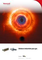 Brüleurs industriels pour gaz BIC, BICA, ZIC
