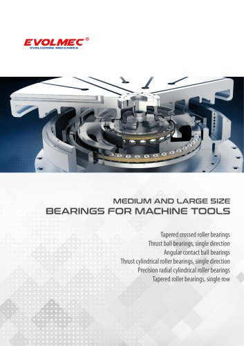 Medium and large size bearings for machine tools