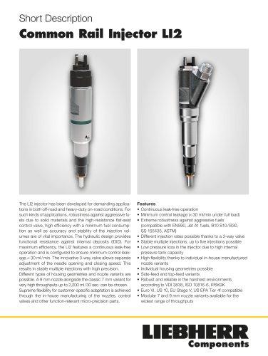 Common Rail Injector LI2