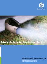Ruiyi Automobile Emission Gas Analyzer Series-Cubic-Ruiyi
