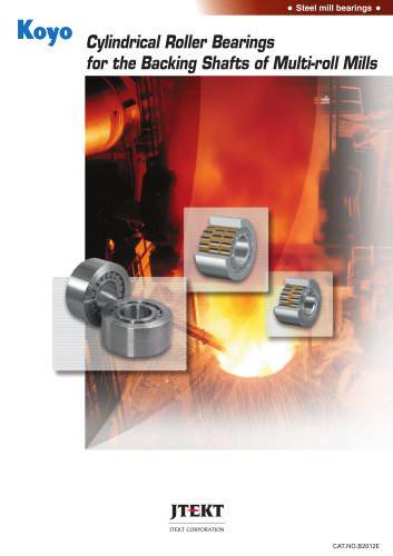 Multi-roll Mill Backing Shaft Bearings