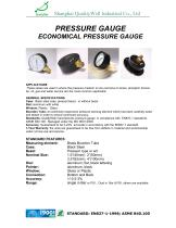 Economical Pressure Gauge