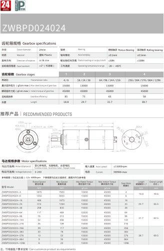 High Torque Motor 24MM PD