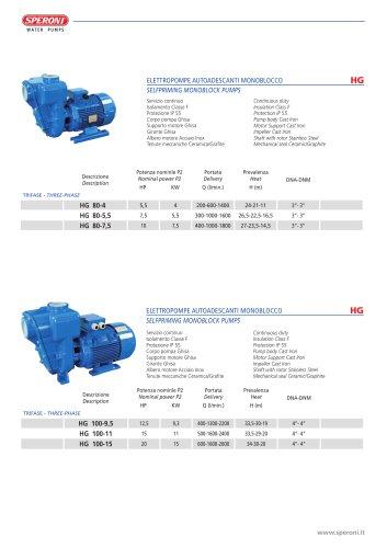 HG-HGM 80-100