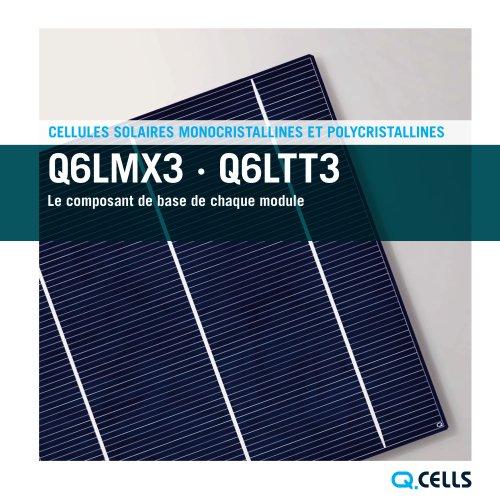 Brochure des Cellules