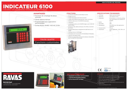 INDICATEUR 6100