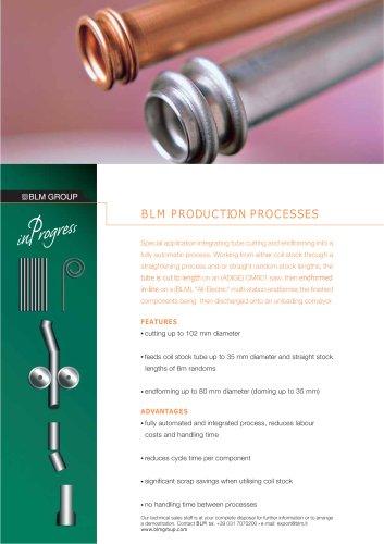 BLM PRODUCTION PROCESSES