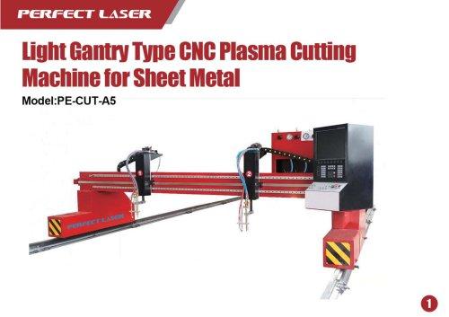 Perfect Laser Plasma laser cutter Light Gantry Type PE-CUT-A5